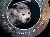 Pixies ilmainen ladattavana Téléchargements gratuits