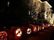Halloween Jackass