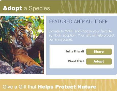 Adopter Un Animal Sur La Page Facebook Du Wwf A Decouvrir