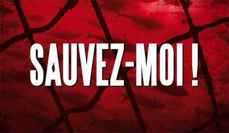 Thon Rouge: la France complice du marché noir!