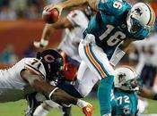 Sautons Conclusions: Bears-Dolphins