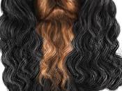 Portrait animalier Ulysse, cavalier king charles noir