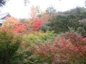 journée Kyoto