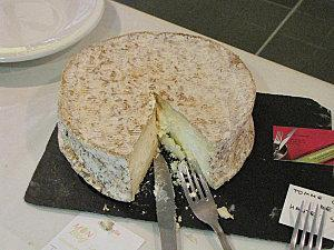Cheesecake-citron-et-myrtilles 7378