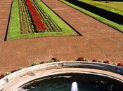 L'IMAGE JOUR: jardin botanique Curitiba