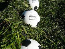 Coupe Ligue demi-finale entre Angers Grenoble