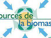 définition biomasse
