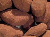 Amandes Chocolat (Cadeau Gourmand)