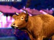 Mauvaises humeurs vaches