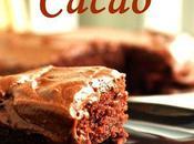 Gâteau tout cacao simplissime Regan Daley
