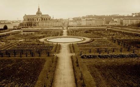 De l'acclimatation de l'abricot en France…