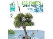 Journée mondiale zones humides 2011