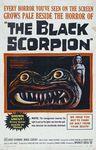 scorpion_noir