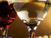 France, terroir noble pour grands vignobles.