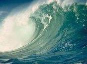 Alerte tsunami Amérique Latine