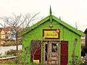 Oléron (suite) cabane verte