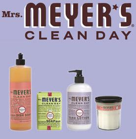 Mrs Meyer's Clean Day, son histoire (Episode 1)