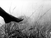 pieds (Pablo Neruda)