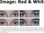 """ÉTHOLOGIE: santé voit-elle dans """"blanc yeux""""? Ethology"""
