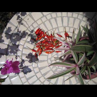 Table jardin mosaïque, table fer forgé ou barbecue charbon un achat ...