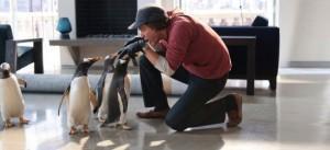 Mr. Popper's Penguins: Nouvelle Bande-annonce frappée !