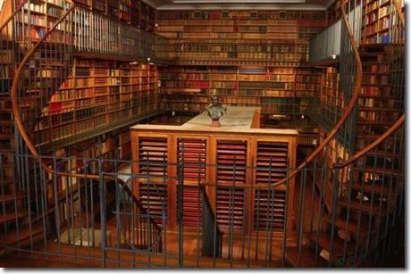 où les Ours dévoilent un coin leurs bibliothèques…