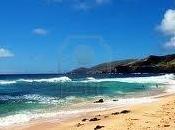 stratégie Honolulu