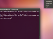 Ubuntu 11.04 Retrouver applications dans barre notification