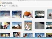 Picasa Gestion photo stockage ligne