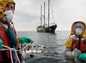 Océan contamination s'aggrave large Fukushima