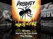Album live Prodigy. commencé concert par...