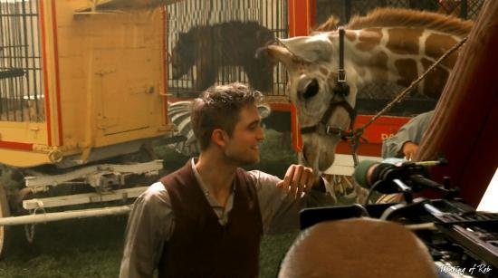 robert Pattinson,water for éléphants