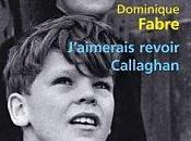 J'aimerais revoir Callaghan, Dominique Fabre