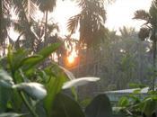Soleil, lève-toi…