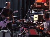 Metallica Reed