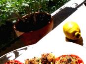 recette Courgette Farcis Mediterranée