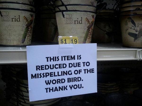 photo humour insolite brid bird misspelling