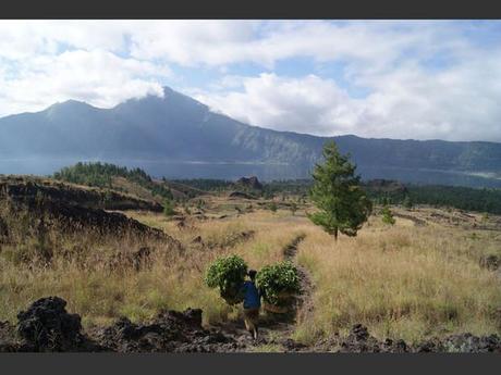 Un porteur, près du volcan Gunung Batur, à Bali, en Indonésie.