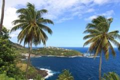 petit tabac and st vincent grenadines poc1.jpg