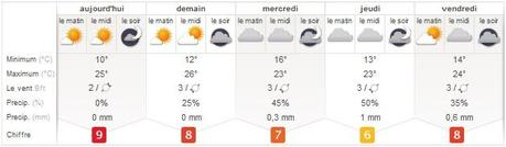 Zoover lance son site météorologique en France : meteovista.fr