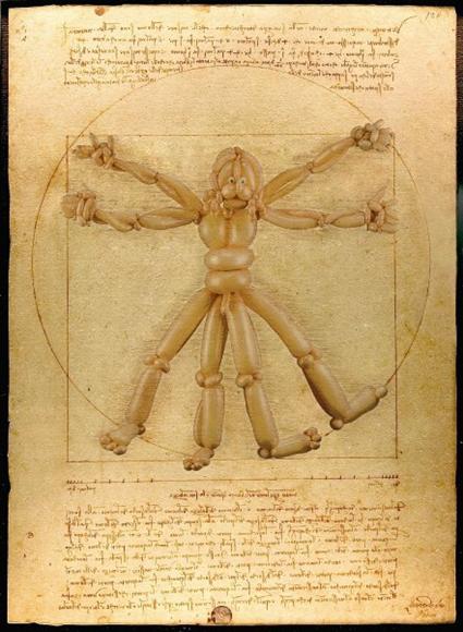 L'homme de Vitruve, Leonard de Vinci