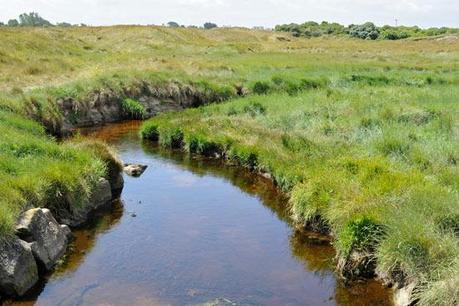 Le fleuve de Saint-Pabu