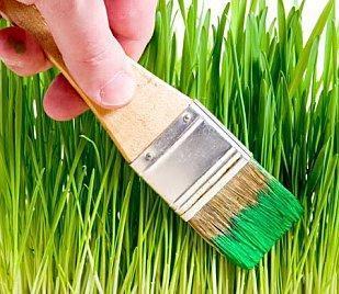 greenwashing_sanslicence.jpg
