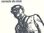 Araucaria Carnets Chili d'Edmond Baudoin (Récit d'un voyage Bande dessinée, 2004)
