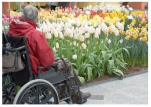 ALZHEIMER (AAICAD): Et si la moitié des cas pouvaient être évités? – Lancet Neurology