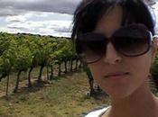Avignon #01- route vins