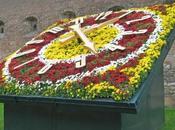 L'Horloge Fleurie sœur Ukraine!