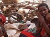 Corne l'Afrique: Plus fonds pour sauver plus