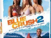 Blue Crush dans bacs Aout