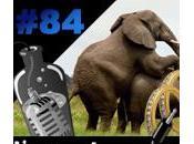 L'apéro Captain Divorce numérique pour community manager Nelly l'éléphant